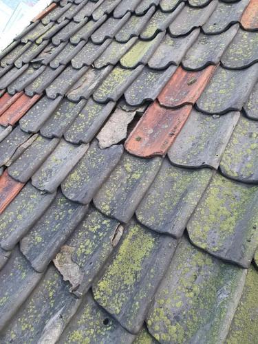 På tide med en tilstandsvurdering av taket? Ta kontakt så ordner vi med en komplett tilstandsrapport
